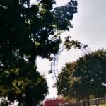 Das Riesenrad ist das Wahrzeichen für den Wiener Prater