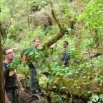 Meine Kollegen beim Wandern durch den Regenwald
