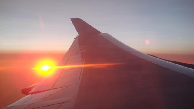 Flug NY - Amsterdam
