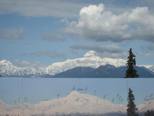 Aussicht auf den grössten Berg Nordamerikas, den Mount McKinley