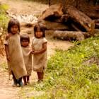 Kogi - Kinder